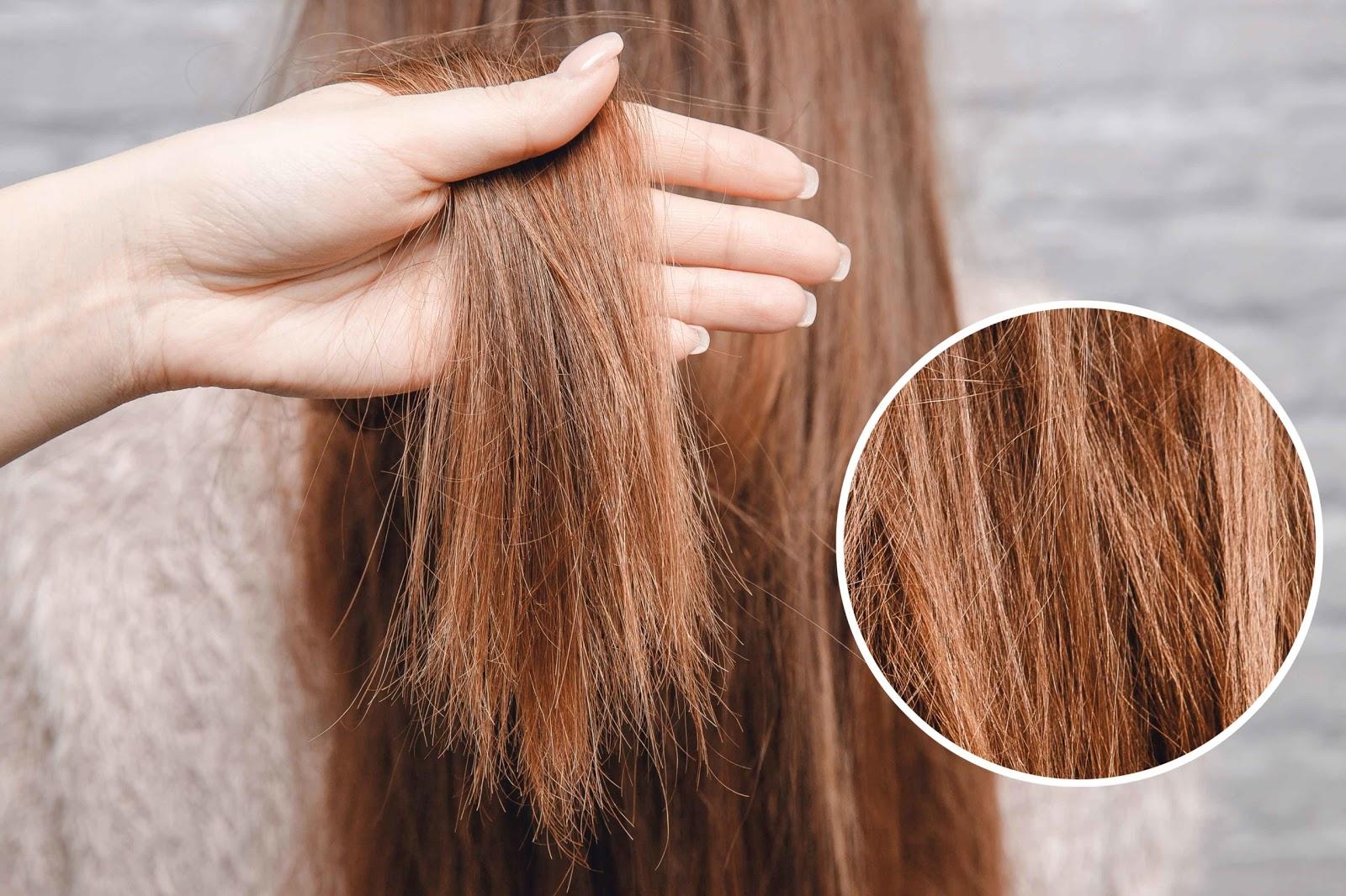 Cách phục hồi tóc xơ hiệu quả tại nhà dễ như trở bàn tay - Tóc giả LUXY